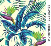 tropical exotic painting... | Shutterstock .eps vector #323602493