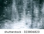 reflection of tree in water... | Shutterstock . vector #323806823