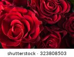 Stock photo bouquet of fresh roses flower bright background 323808503
