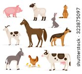 a collection of farm animals on ... | Shutterstock . vector #323875097