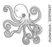 hand drawn engraving octopus ... | Shutterstock .eps vector #323950637