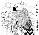 Lovely Parrot Coloring Page In...