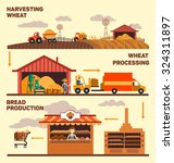 production of bread  harvest ... | Shutterstock .eps vector #324311897