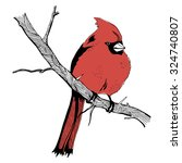 linear sketch with a red bird... | Shutterstock .eps vector #324740807