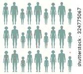 vector human  anatomy  pain... | Shutterstock .eps vector #324775067