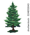 christmas tree drawing isolated ... | Shutterstock .eps vector #324853043