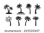 vector black palm icon on white ...