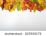 colorful autumn leaves border | Shutterstock . vector #325533173