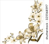 lily and orchid  corner ... | Shutterstock . vector #325568597