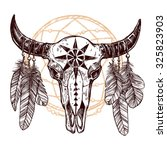 Buffalo Skull With Feathers An...