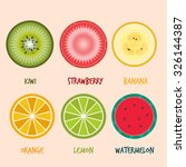set of fruits slices  vector...
