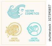 vector set of logo design... | Shutterstock .eps vector #327390857