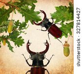 Small photo of Beetles of Lucanus cervus (Lucanidae) and Oak leaves on the old paper textured background