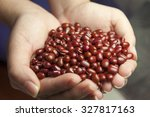a red beans in the hands. | Shutterstock . vector #327817163