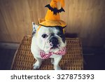 Stock photo portrait of french bulldog with hat halloween 327875393