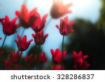 lots of bright red tulips... | Shutterstock . vector #328286837