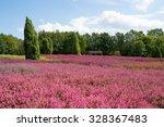 heathland with flowering common ... | Shutterstock . vector #328367483