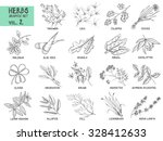 hand drawn vector set of herbs... | Shutterstock .eps vector #328412633