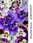 Colorful Floral Background Fro...