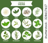 collection of herb  food vector ... | Shutterstock .eps vector #328617617