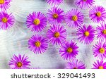Bright Flowers In The Water Fo...