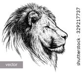 engrave isolated lion vector...