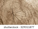 Surface Of Timber Background