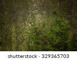 Green Moss  Grunge Texture ...