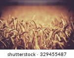 photo of background  backdrop... | Shutterstock . vector #329455487