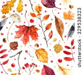 pattern from autumn leaves...   Shutterstock . vector #329538323