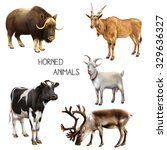 Set Of Animals With Horns ...