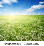 Field Of Daisies Blue Sky And...