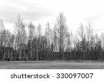 Winter Tree Conceptual Image....