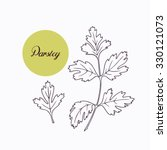 hand drawn parsley branch with... | Shutterstock .eps vector #330121073