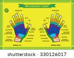 hand reflexology chart with... | Shutterstock .eps vector #330126017