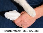 a cat's paw is gently touching ... | Shutterstock . vector #330127883