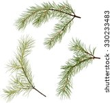 illustration with pine branches ... | Shutterstock .eps vector #330233483