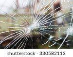 damage  violence  vandalism and ...