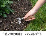 Woman Digs Into The Soil Of A...