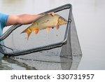 Fisherman Using  Dip Net For...