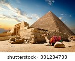 Camel Rests Near Ruins Of...