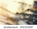 the fir tree branches sparkling ... | Shutterstock . vector #331323287