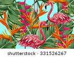 Pink Flamingo  Exotic Birds ...