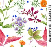 pattern of watercolor drawing... | Shutterstock . vector #331686173