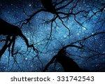 Beautiful Night Sky  The Milky...