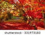 Autumn Park As Nice Natural...