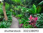 Tropical Garden Landscape
