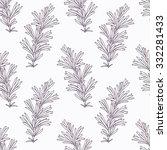 hand drawn rosemary branch... | Shutterstock .eps vector #332281433
