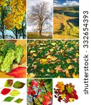 mix of different autumn photo... | Shutterstock . vector #332654393