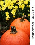 Pair Of Pumpkins Sitting In Th...